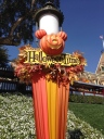 Disneyland is all spruced up for Halloween Time!