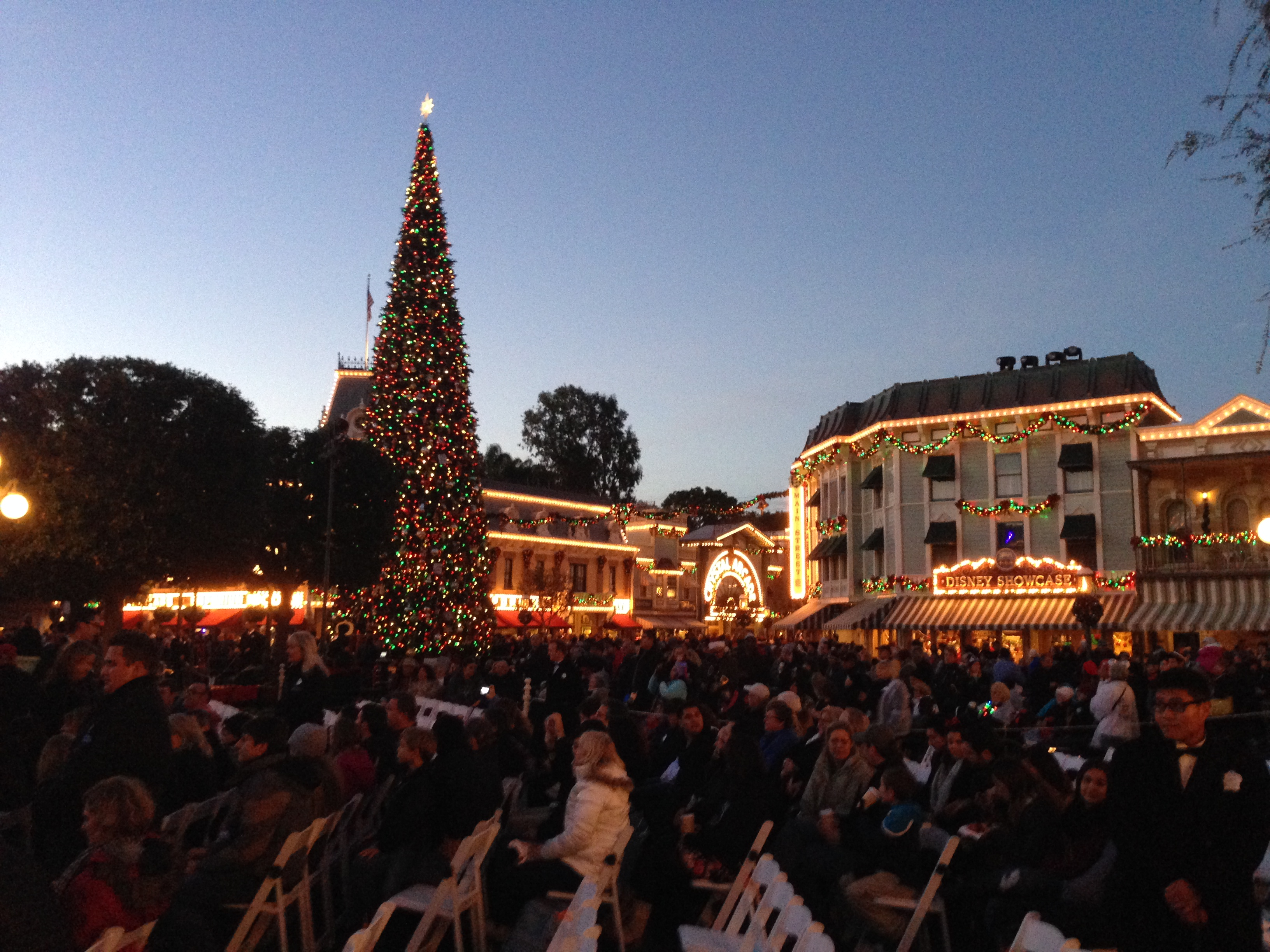 By the time of the Tree Lighting Ceremony, crowds are amassing steadily - must be thousands