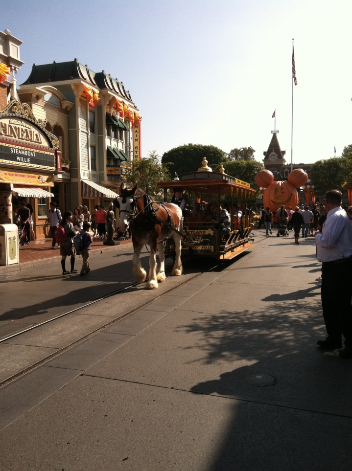 Horse-drawn trolleys - a prime example of Walt Disney's commitment to detail