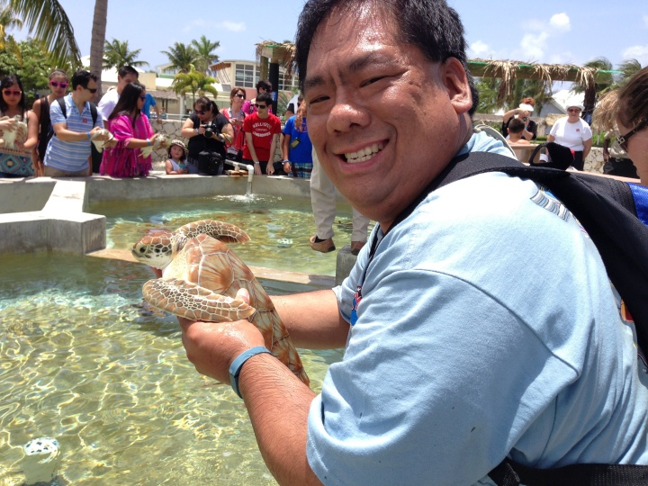 Getting to hold a baby sea turtle in my hands - lots of precautions for cleanliness taken to keep the turtles safe