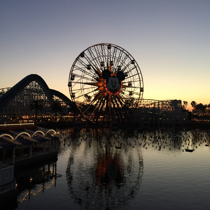 Love this shot of DCA at dusk